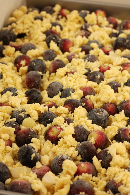blueberry shortcake crumble© by Haalo