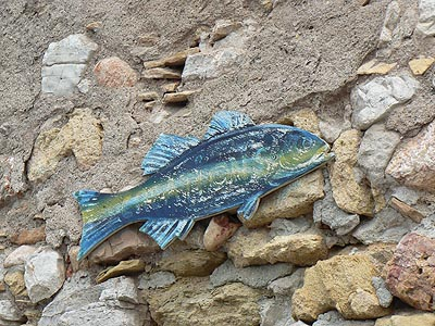poisson à Bouzigues.jpg