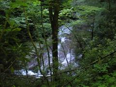 59 - Little East Fork Falls