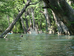 Blue Hole, Wimberley, TX