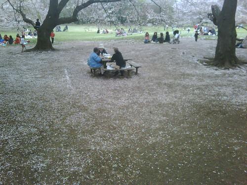 Kinutakouen Apr 2010