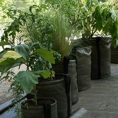 potten op rij (GRIJSBONT) Tags: design outdoor balkon trend tuin terras accessoires bloempot tuinidee worteldoek tuinontwerp bacsac collectie2010 tuintrend recyclebaar meerdangrijs grijsbont moestuintips