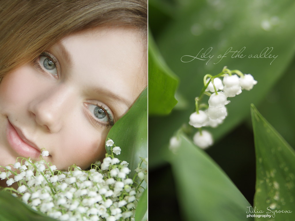 lily of the valley-1