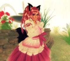 Tags: pink fur ruffles furry lashes tail curls lolita secondlife sissy