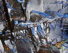 Wet Rock (Argentem) Tags: wet rock wow geotagged dartmoor eyecatchers meldon hornfels aplitequarry geo:lat=50709552 geo:lon=4031183