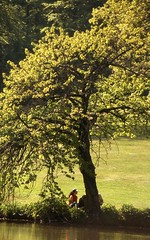 Relax (uempe (only sporadically here)) Tags: 2001 møn liselund denmark dänemark danmark analogue slide photo foto nikon dia nikonf90x baum tree pflanze plant water wasser analog scan scanned landscape landschaft nature natur