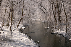 Stream near Victory Road, Suffern, NY (johncudw2399) Tags: snow ny stream suffern