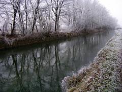 quel giorno era cos... (Claudio61 una foto ferma un ricordo nel tempo) Tags: gelo brina acqua freddo paesaggio canale ghiaccio lomellina foschia paisajesdepueblosycampos yourcountry greatshotss vigavano