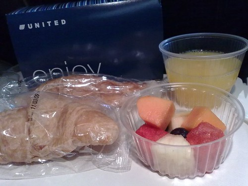 United's Indian Vegetarian meal