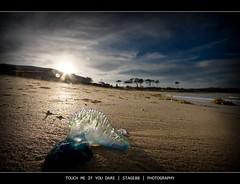 Touch Me If You Dare (Sam Ili) Tags: blue sunset sea sky sun beach silhouette clouds canon bottle soft australia hdr ulladulla mollymook shoalhaven explored 450d canon1022mm3545