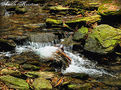 In spring the brooks return | Lancaster County (*Arielle*) Tags: county water river waterfall moss spring rocks stream pennsylvania trail lancaster brook susquehanna arielle conestoga ariellekristina