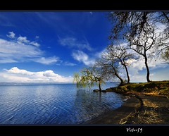 L'angolo....EXPLORE. (sirVictor59) Tags: blue sky italy white lake reflection verde water landscape lago topf50 nikon bravo italia nuvole nikond70 blu wildlife topv1111 cielo marta transparent 1001nights topf150 picturesque acqua topf100 azzurro viterbo topf250 topf200 bolsena lazio riflesso 10mm montefiascone naturesfinest capodimonte lagodibolsena abigfave gradoli valentano sanlorenzonuovo aplusphoto infinestyle frhwofavs ysplix platinumheartaward great123 natureselegantshots magicdonkeysbest sirvictor59 goldenheartaward grouptripod saariysqualitypictures weirenasfaves