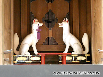 Two fox statues