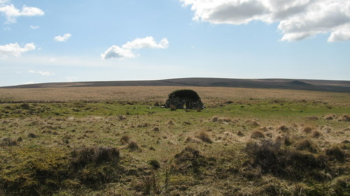 Ruin - Easter Sunday (Dartmoor)
