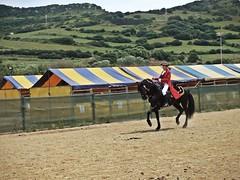 (Cornixelis) Tags: horses horse caballo jinete menorca amazona cavall cavallmenorca