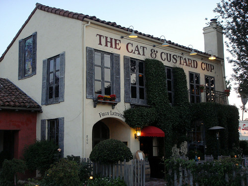 The Cat & the Custard Cup