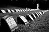 Graveyard (rolandvarriale) Tags: ny graveyard delete10 delete9 delete5 delete2 brothers delete6 delete7 cemetary delete8 delete3 delete delete4 save save2 marist esopus
