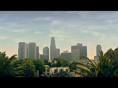 DSC_5735m (UbiMaXx) Tags: california trees usa building skyline movie landscape la los interesting nikon downtown angeles style palm frame cinematic paysage maxx d700 ubimaxx