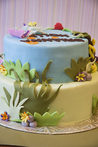 back of jungle cake