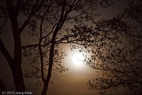 Mondlicht auf der Wartburg bei Eisenach - Joerg Esser Fotografie