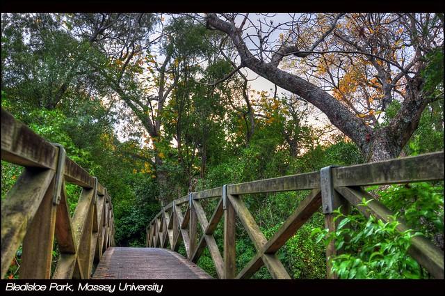HDR-Bledisloe Park