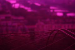 (Michel DA SILVA) Tags: voyage trip travel viaje paris france tower tourism canon lens rebel 50mm europa europe tour pentax burgundy eiffel toureiffel viagem turismo bourgogne francia tourisme xsi 89 tore yonne joigny pentaxlens sooc 450d smcpm50mmf17 rebelxsi kissx2 canoneos450 micheldasilva wwwdasilvamichelcom smcpentaxasahi