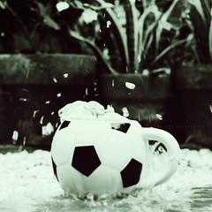 Splash! (140/365) (merphi) Tags: mug splash