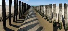 Caged (Bernd H) Tags: panorama holland beach netherlands lines shadows nederland zeeland september poles 2009 breakwater stiched walcheren domburg hugin tamronspaf1750mmf28xrdiiildasphericalif nikond80