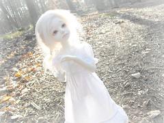 Ghost (Tales of Karen) Tags: sun white forest ball asian doll skin spirit ghost bjd resin abjd riz msd jointed planetdoll