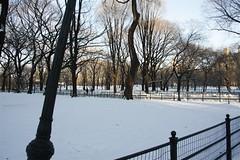 New York City - Central Park (plander) Tags: nyc newyorkcity usa ny newyork centralpark manhattan eua bigapple  thebigapple novaiorque     plander                 paololanderghini
