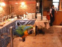 阿里巴巴的廚房_001