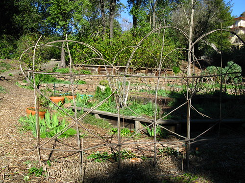 Vegetable garden structure