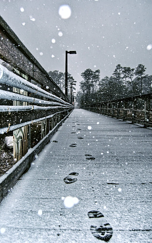 Snowy Footprints On The Dock The dock on the Intracoastal Waterway at UNCW