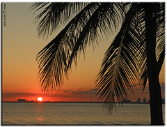 florida sunset.. (iCamPix.Net) Tags: sunset usa sun silhouette florida miami explore fl soe yatch mostviewed miamidade downtownmiami canonef2470mmf28l floridasunset themostbeautiful 6381 miamidadecounty ultimateshot keybiscaye canoneos1dsmarkiii mostwatched icampixtechnologyleveli