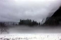 Valley mist (dosik) Tags: california snow painterly mountains fog yosemitenationalpark anselesque