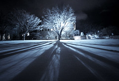 and then there was light (2). (matt.hintsa) Tags: nightphotography winter usa snow ny newyork tree college silhouette night campus geotagged us university shadows unitedstates snowy wideangle explore northamerica cornell ithaca 1022mm silhouetted baretrees baretree 1022 ivyleague cornelluniversity wintry collegecampus artsquad cornellcampus ithacany flickrexplore 50d explored eos50d canoneos50d canon50d cuwinterjan09