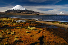Volcan Parinacota (Leonid Plotkin) Tags: chile mountain southamerica nature landscape volcano volcan parinacota lauca lagochungara chungara volcanparinacota laucanationalpark