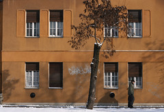 Cooling (sonofsteppe) Tags: life street old city windows winter light urban house man cold detail building tree art weather yellow wall architecture facade 50mm daylight wooden stem hungary exterior place outdoor walk seasonal budapest dirty explore human shutter environment moment ochre snowfall exploration chill passerby stucco cooling revisited bole scribbled wallscape sonofsteppe pusztafia zugl urbanlifeoftrees