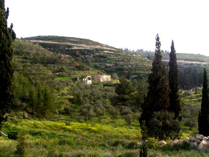 Spring in Palestine