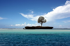 Wonderful nonentity - Wundervolles Nichts (Getty Images) (alles-schlumpf) Tags: ocean africa blue shadow sky cloud tree nature water clouds strand landscape island photo sand meer wasser waves foto kenya urlaub natur indianocean dream picture himmel wolke wolken pic insel getty afrika grn blau landschaft farbe schatten ferien kenia baum einsamkeit gettyimages schlumpf farben schnheit einsam wellen traum trkis tansania ozean nichts schn alleine indischerozean trumen traumhaft nonentity schattenspender flickrsbest colorphotoaward aplusphoto colourartaward danielahartmann flickrlovers allesschlumpf ringexcellence