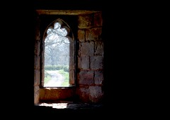 Window on wetheral