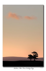 Barden Moor From Embsay Crag (SteveMG) Tags: tree silhouette sunrise yorkshire smg moor picturesque yorkshiredales 400mm embsay barden
