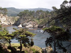 Bluefish Cove (tmrae) Tags: coast monterey pacific pointlobos