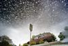Faux Galaxy Sky (willstotler) Tags: leica reflection car puddle upsidedown cosina voigtlander m8 parked delaware ultrawide 15mm dover heliar cv15 leicam8 willstotler