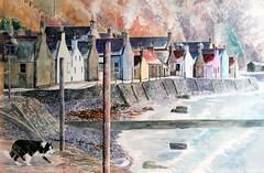 Crivie with Dog and Gull. watercolour. Jane Pettigrew. (Masterpiece Art Studio) Tags: coast watercolour morayfirth crovie janepettigrew