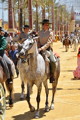 Joven Amazona (Virues de Segovia) Tags: espaa horse caballo cheval andalucia cavallo cavalo pferd feriadejerez