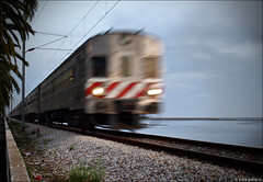 runaway train (julioc.) Tags: railroad motion blur portugal water beautiful speed train faro movement agua grandmother action decay quality stripes tracks rail railway nopeople olympus diagonal motionblur coastal getty algarve velocity atmospheric decayed e510 bigmomma fullspeed julioc challengeyouwinner photographybyjulioctheblog olympuse510 ossonoba ilustrarportugal srieouro j2549