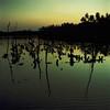 Twilight Abstract (IMG0006) (Fadzly @ Shutterhack) Tags: leica sunset film silhouette analog river catchycolors landscape twilight fuji lagoon malaysia fujifilm terengganu kualaterengganu my fujipro160s leicar6 fadzlymubin shutterhack negativefilmscan summicronr35mmf20 marangfishingvillage leicasummicronr35mmf20e55