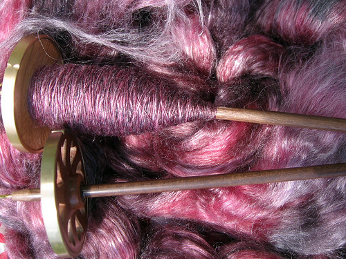Black Cherry spun on Goldings