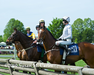 Patriots Path and Bubble Economy at the Virginia Gold Cup